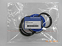 REMHZS-DS.306N Seal kit (Replace Plasser HZS-DS.306N)