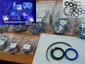 REM.HY600.05DS Seal Kit (Dichtungssatz) {Replace Plasser HZ01.100 Seal Kit}